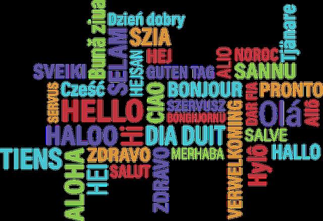 ¿Conoces los idiomas en Internet?
